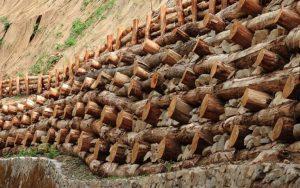 Progettare con i principi dell'ingegneria naturalistica @ Museo della Cultura Rurale Prealpina